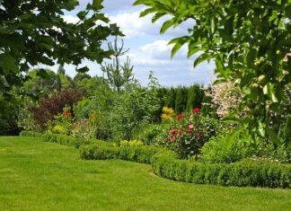 Rok w ogrodzie